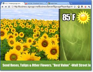 webbroswer.png?1437676668