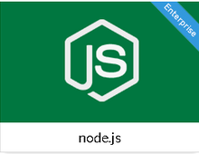 node.js - custom development