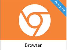 Browser - Google Chrome... loaded